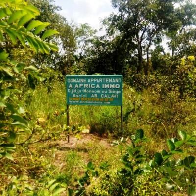 50 hectares de terres cultivables à Djidja Monsourou
