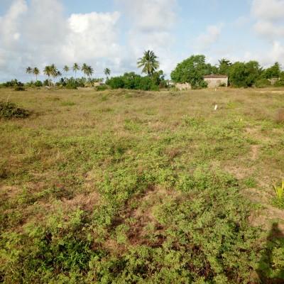Domaine de deux hectares avec titre foncier à Glo djigbe- Africa Immo.
