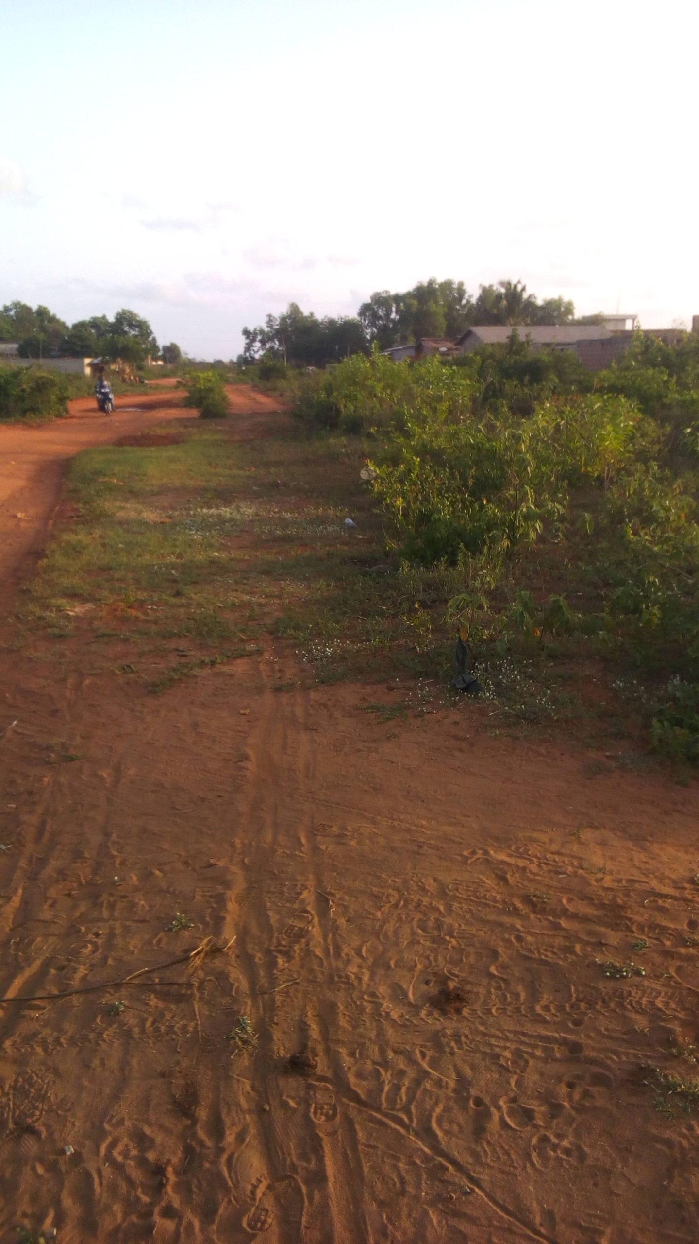 Parcelles recasées djregbe au bord de la voie menant vers la radio weke. La parcelle est d'une superficie de 300 m² . Les deux font une superficie de 600 m². La zone est vivable et propice aux projets de commerce et assimilés