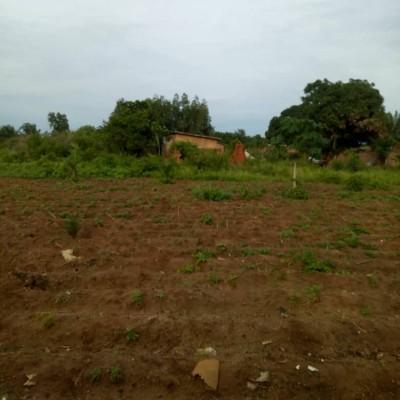 Vente de deux parcelles de superficie totale de 1000 m² à Pahou Tchakodji.