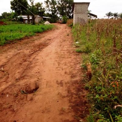 Parcelle-Zinvié-Africa Immo.