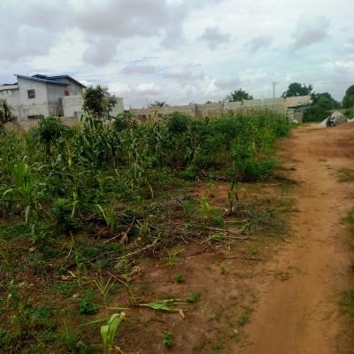 Douze Parcelles de 315 m² Adjagbo 300 m des Logements sociaux