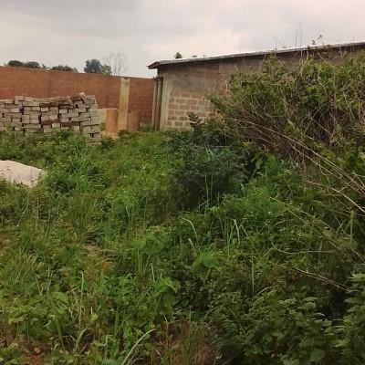 En vente une parcelle avec Titre Foncier de 1200 m² dans la commune d'Abomey Calavi. Ladite parcelle est situé dans la zone du séminaire (Alédjo). Offre très intéressante