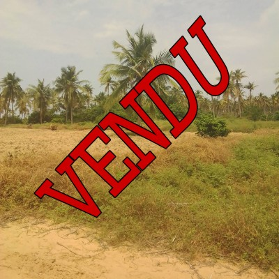 Parcelle avec Titre Foncier à Avlékété plage (Ouidah) route des pêches.
