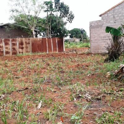Une parcelle de 325 m² sise à AWAKE dans la commune d'Abomey Calavi Zone MARIA GLETA