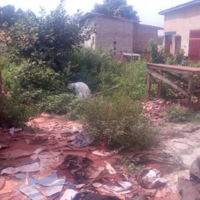 Quatre (4) parcelles à Ouedo Kpossidja derrière les logements sociaux -Africa Immo Bénin