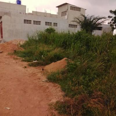 06 Parcelles de 350 m² sur TF à Togba