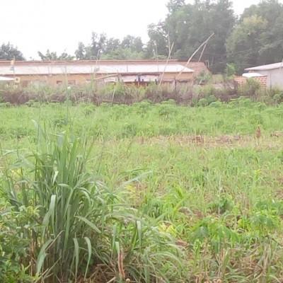 Parcelles de 500 m² situées à Kétou face projet Songahi- Africa Immo.