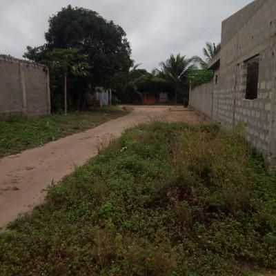 Parcelle de 400 m² à Fidjrossè -Africa Immo.