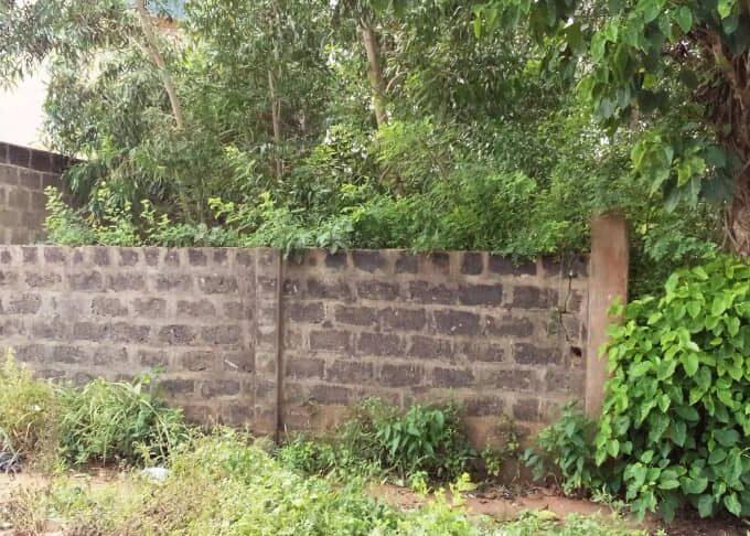 01 Parcelle recasée à Ouidah (carrefour Gbènan)