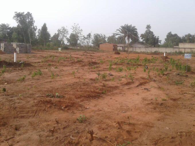 Des parcelles de 350 m² avec Titre Foncier global à Abomey-Calavi